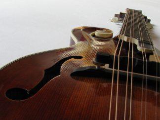 Mandolins and violins