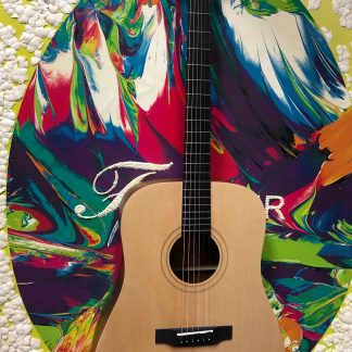 NEW Teton STS10NT Acoustic Guitar