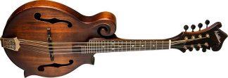 NEW Washburn M108SWK-D F Style Mandolin