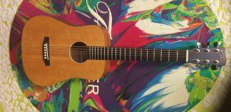 NEW Recording King RD-A3MQ Acoustic Guitar