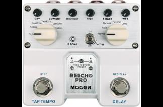 NEW Mooer (TDL1) Reecho Pro Twin Pedal