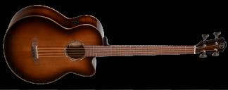 NEW Teton STB130FMGHBCENT Acoustic Bass Guitar
