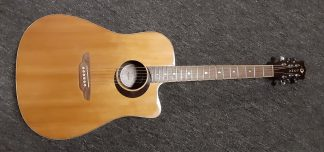NEW Luna OCL ECL Acoustic Guitar