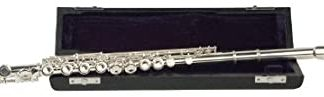 NEW Palatino (WI-806-FS) C Flute
