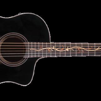 NEW Washburn BTS9VCECH Acoustic Guitar
