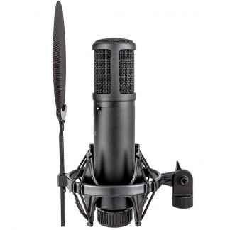 NEW SE Electronics (SE2200) Condenser Microphone