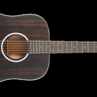 NEW Washburn DFED Acoustic Guitar