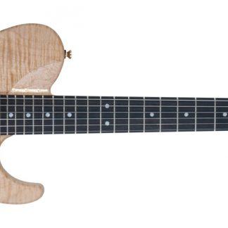 NEW Washburn NELEDLX-D Electric Guitar